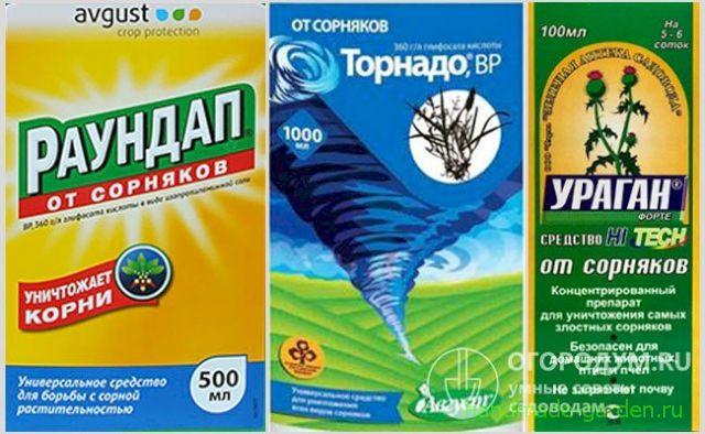 От березки лучше гербициды глифосатные
