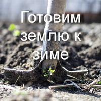 Imagetools0 29