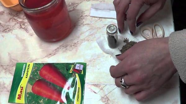 Высадка томатов ленточным методом