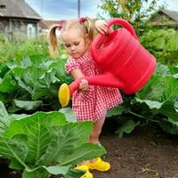 Обустройство детского огорода на даче
