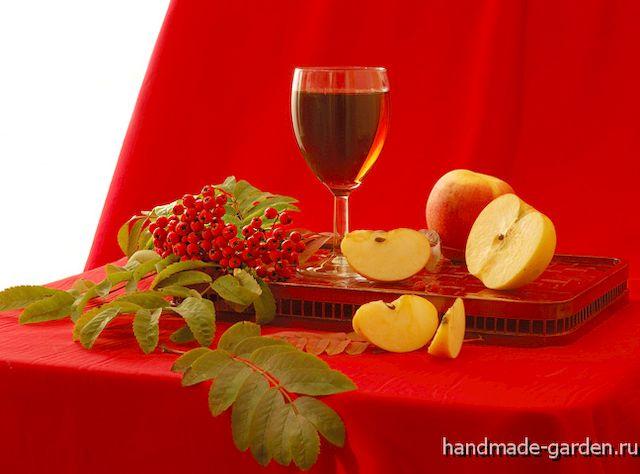 Как сделать вино из ранеток