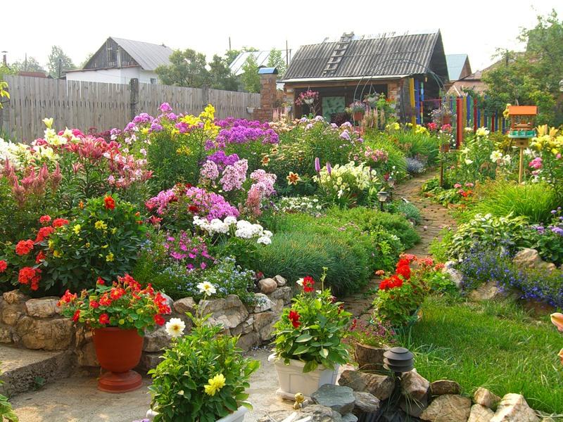 постоянно цветущий сад