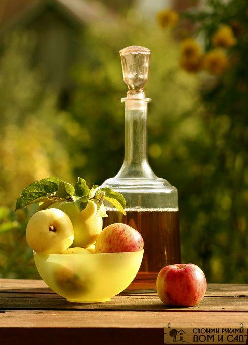 Домашнее вино из ябл…