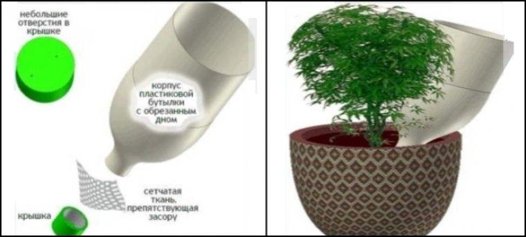 Автополив комнатных растений