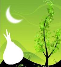 Лунный посевной календарь огородника и садовода на 2020 год