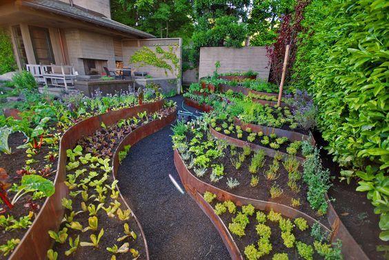 Планирование огорода - грядки, посадки, дизайн