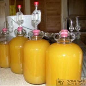 бутыль для брожения с гидрозатвором