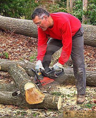 сделать дорожку из спила дерева