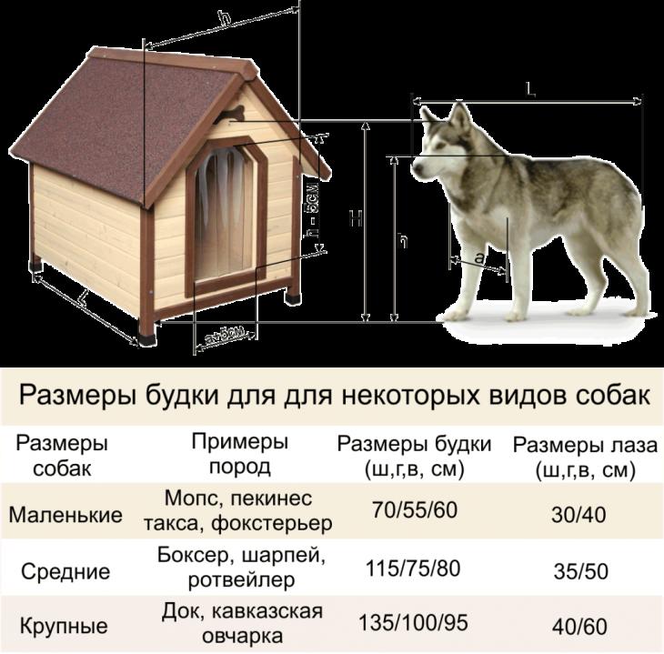 Размеры будки для собак