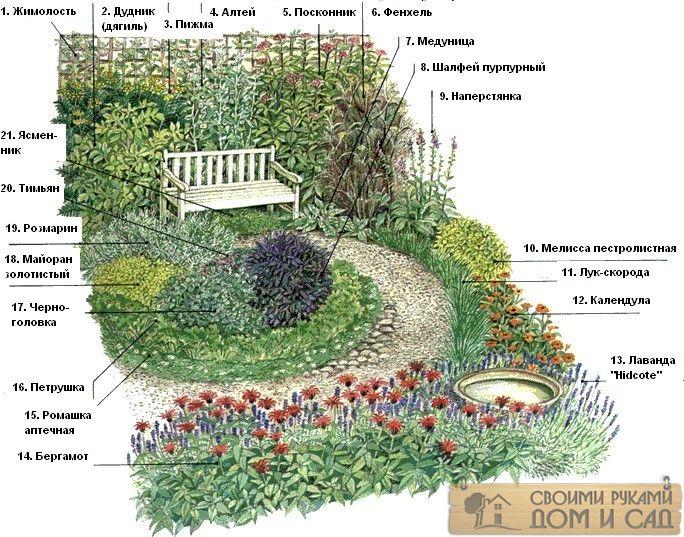 Сад пряных трав