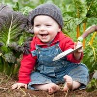 Создаем детский огород на даче. Создадим грядку для малыша