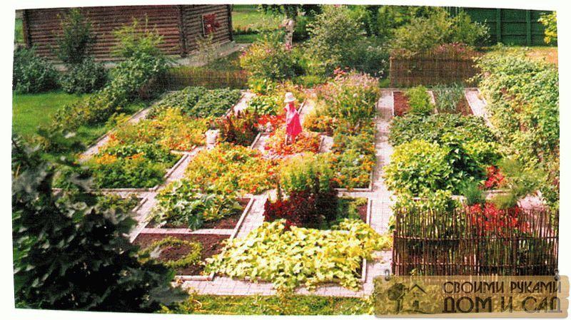 Огород для ленивых