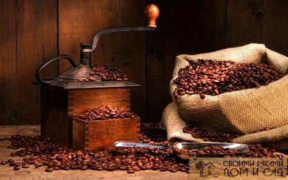 Кофе - виды, сорта. …