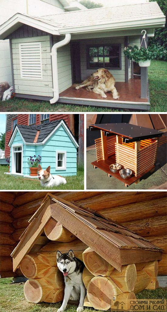 Будка для собаки на …