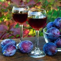 Вино из сливы домашнего приготовления
