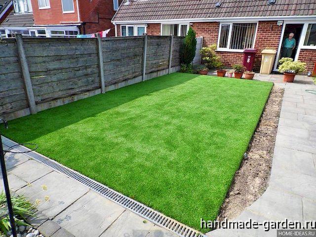 Какую траву посадить для газона