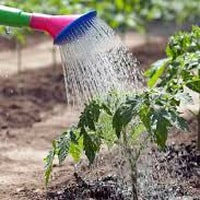 Разновидности систем полива для дачи и огорода