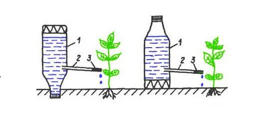 Через отверстие в бутылке можно поливать растения