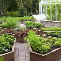 Организуйте ленивый огород