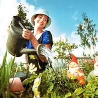 Как создать сад и огород для лентяя