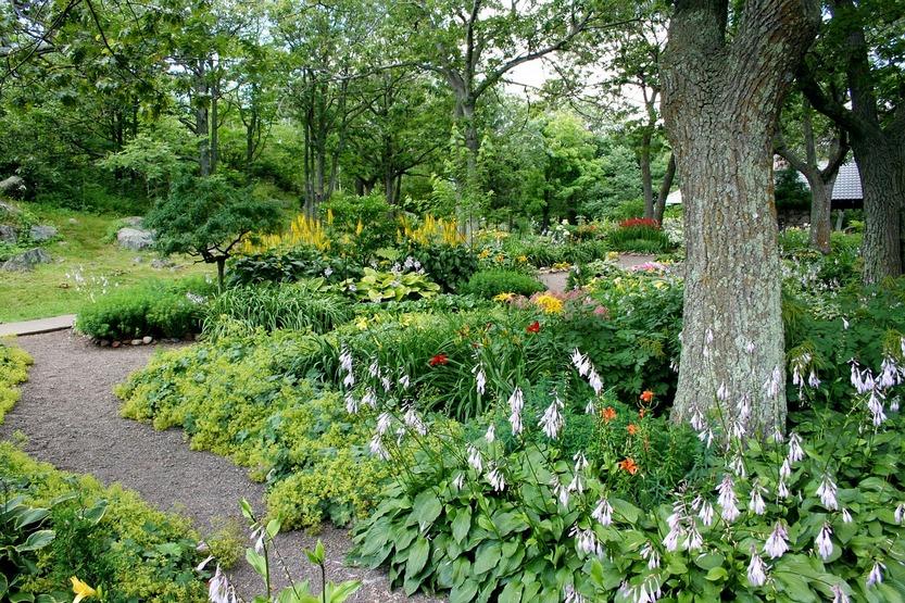 Садовые растения, наползающие на дорожку по фен-шуй