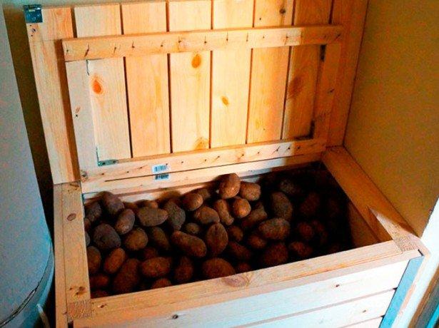 Хранение картофеля на балконе или лоджии