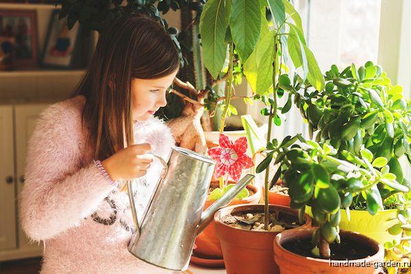 Как поливать комнатные растения в зимнее время?