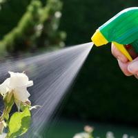 Сколько надо расходовать раствора ядохимиката на 1 растение?