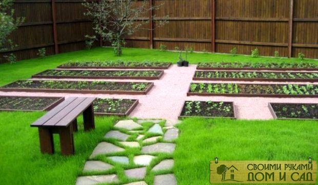 Какие удобрения вносить в огород весной?